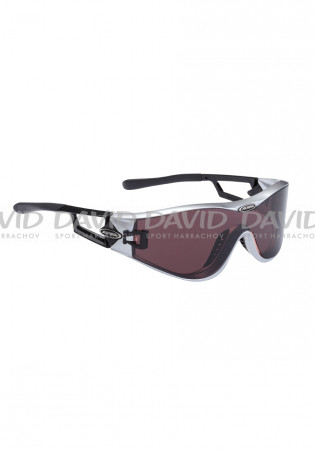 detail Alpina Swing 32 Sports Goggles