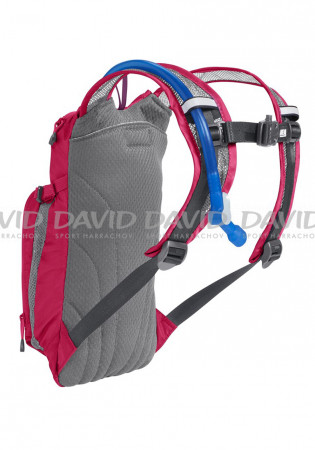 detail Bag Camelbak Mini Mule Hot Pink/Purple Stripe