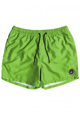 Children's shorts Quiksilver EQBJV03141 Everyday Volley Youth green